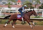 Roy H works under Kent Desormeaux at Del Mar