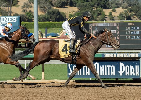 Beautiful Shot wins the 2017 Speakeasy Stakes