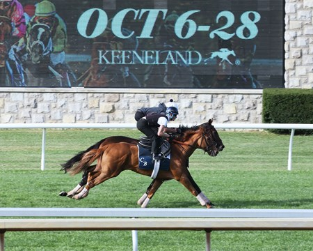 New Money Honey - Uni | Work | Keeneland | 10-07-17