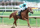 Monomoy Girl enters the Golden Rod off a win in the Rags to Riches Stakes