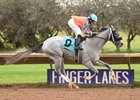 April Fog breaks her maiden at Finger Lakes Oct. 25
