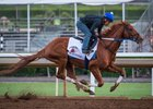 Gun Runner works a half-mile in :50 2/5 at Santa Anita Oct. 2