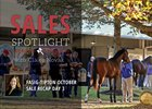 2017 Fasig-Tipton October Sale Recap Day 3