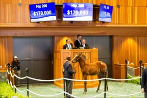 Hip 200, an Into Mischief colt, topped the sale at $170,000