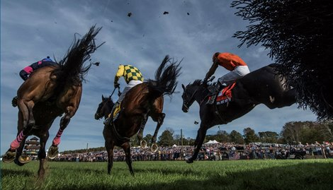 National Steeplechase Association to Livestream Races