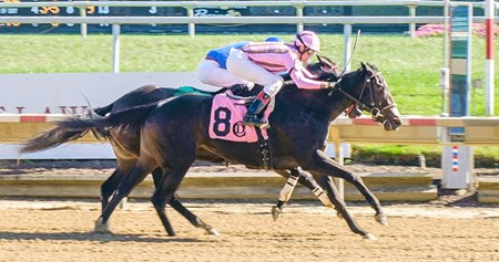 Bay of Cats runs down The Bay Express to get her first win at Delaware Park Oct. 19