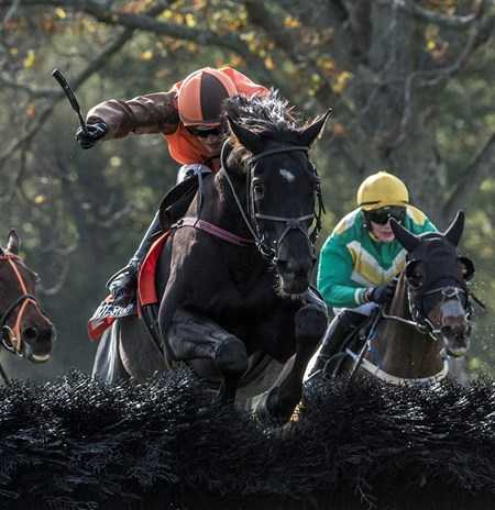 Jockey Danny Mullins guides Mr. Hot Stuff over the final fence to win the Grand National Steeplechase race at Far Hills Race Course  Oct. 21, 2017 in Far Hills, N.J.