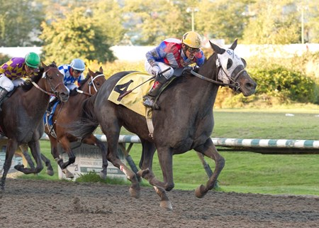 Notis The Jewell wins the 2017 Ballerina Stakes