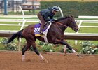 Paradise Woods gallops at Del Mar in preparation for Longines Breeders' Cup Distaff