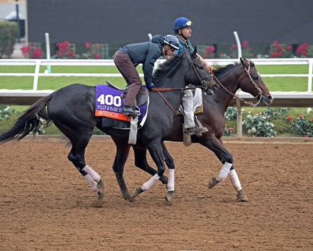 Avenge