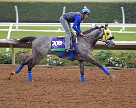 Hunt Breeders' Cup horses on track at Del Mar racetrack on Oct. 28, 2017 Del Mar Thoroughbred Club in Del Mar, CA.