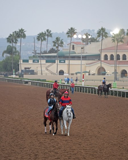 Cambodia and other horses Breeders' Cup horses on track at Del Mar racetrack on Oct. 29, 2017 Del Mar Thoroughbred Club in Del Mar, CA.