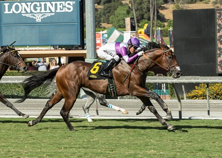 Reddam Racing's B Squared and jockey Mario Gutierrez win the $100,000 California Flag Handicap, Saturday, October 21, 2017 at Santa Anita Park, Arcadia CA.