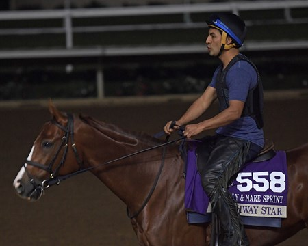 Highway Star Breeders' Cup horses on track at Del Mar racetrack on Oct. 28, 2017 Del Mar Thoroughbred Club in Del Mar, CA.