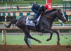 Arrogate works a half-mile in :50 flat at Santa Anita Oct. 3