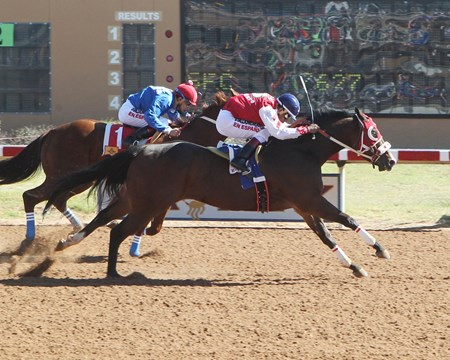 Major Bites wins the 2017 Rocky Gulch New Mexico Classic Cup Champion Stakes