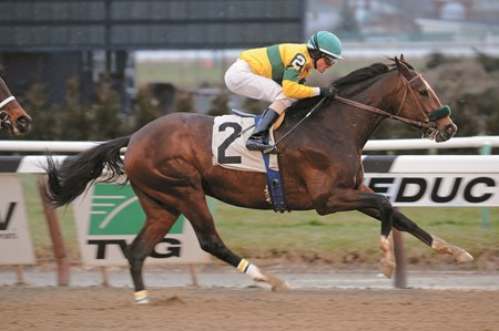 Saratoga Snacks wins the Alex M. Robb Stakes with jockey Ramon Dominguez at AQUEDUCT, Ozone Park, NY, Purse: $75,000 Date: December 26, 2012, Age: 3 yo's & up, Race: 4, Distance: 1 1/16 Miles