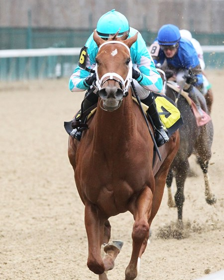 Monomoy Girl wins the 2017 Rags to Riches Stakes