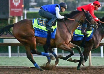 Abel Tasman works at Santa Anita Oct. 22