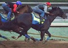 Mor Spirit works outside of stablemate Cat Burglar Oct. 29 at Santa Anita Park
