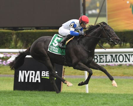 Blacktype (FR) wins the 2017 Knickerbocker Stakes (G2T)