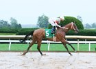 Mia Mischief won a maiden race by more than 16 lengths Oct. 8 at Keeneland.