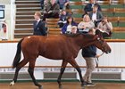 Lot 1063, a Sea The Stars colt, brought 850,000 guineas Oct. 11