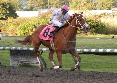 Awesome Slate wins the 2017 BC Premier's Handicap on 10/09/17 with rider Richard Hamel