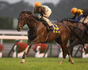 Kiseki and Mirco Demuro win the Kikuka Sho