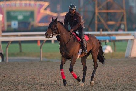 Flamboyant galloping last month ahead of his third-place finish in the Pattison Canadian International at Woodbine