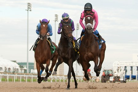 Patrick Husbands (Pink silks black cap) guides Wonder Gadot to victory in the 2017 Mazarine Stakes for owner Gary Barber and trainer Mark Casse.