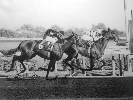 Priceless Gem defeats Buckpasser in the 1965 Futurity Stakes