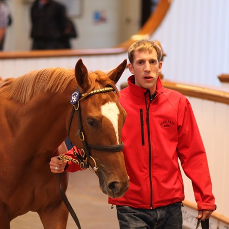 2017 Tattersalls October yearling sale Lot 155 Frankel (GB) / Prowess (IRE) Ch.F.   2,500,000   Consignor: John Troy (Agent) — Purchaser: SackvilleDonald   Tattersalls October Yearling Sale Book 1  03/10/17