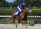 Spicy Nelly wins easy Oct. 29 at Gulfstream Park West