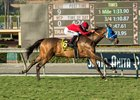 Sharp Samurai carries Gary Stevens to the jockey's sixth Twilight Derby score at Santa Anita Park