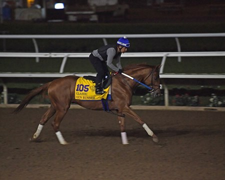 Gun Runner Breeders' Cup horses on track at Del Mar racetrack on Oct. 29, 2017 Del Mar Thoroughbred Club in Del Mar, CA.