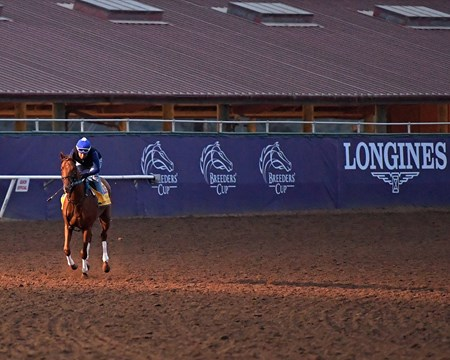 Gun Runner in final work Breeders' Cup horses on track at Del Mar racetrack on Oct. 30, 2017 Del Mar Thoroughbred Club in Del Mar, CA.
