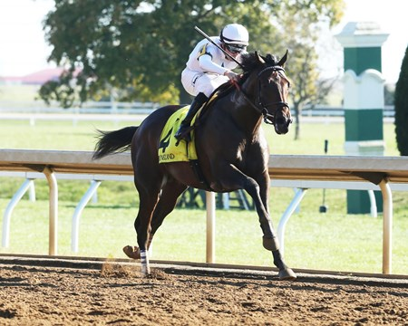Quip - Allowance Win, Keeneland - October 19, 2017