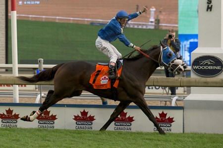 Bullards Alley wins the 2017 Pattison Canadian International Stakes (G1T)