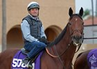 Champion sprinter Roy H will make his season debut with Kent Desormeaux in the Palos Verdes Feb. 3