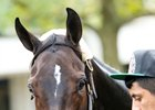 La Coronel is two-for-two at Keeneland