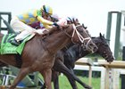 The close finish of the Dixiana Bourbon Stakes at Keeneland Oct. 8