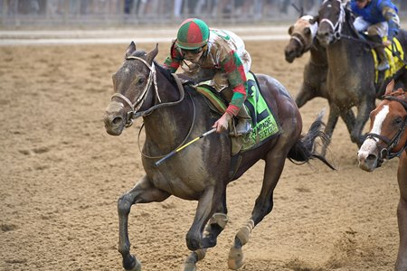 Firenze Fire seizes victory in the Champagne Stakes at Belmont Park