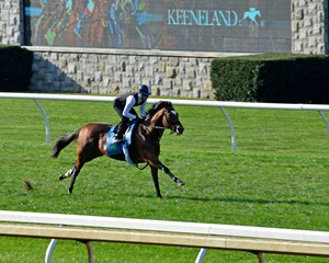 Heart to Heart finishes up his four-furlong work in :49 1/5 at Keeneland