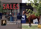 2017 Fasig-Tipton October Sale Recap Day 1