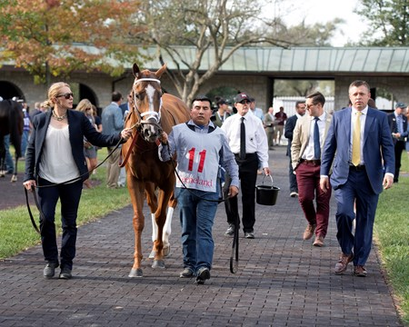 In the saddling area Whitmore with Manuel Franco wins the Stoll Keenon Ogden Phoenix (G2) at Keeneland. Heavenly Love with Julien Leparoux wins the Darley Alcibiades (G1) at Keeneland. Oct. 6, 2017 in Lexington, Kentucky.