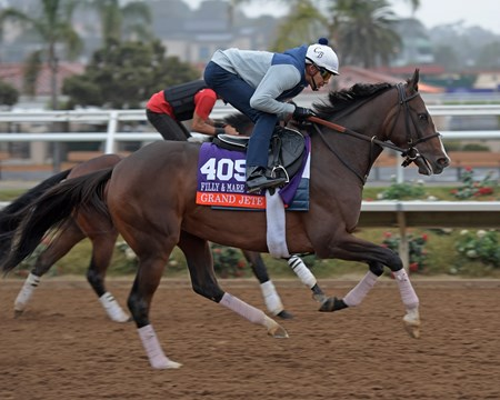 Grand Jete Breeders' Cup horses on track at Del Mar racetrack on Oct. 31, 2017 Del Mar Thoroughbred Club in Del Mar, CA.