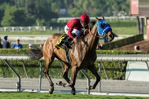 Sharp Samurai wins the Twilight Derby at Santa Anita Park