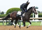 Neolithic gallops Oct. 25 at Keeneland