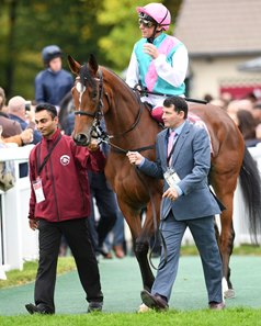 Qatar Prix de l'Arc de Triomphe winner Enable is one of the four nominees for Cartier Horse of the Year